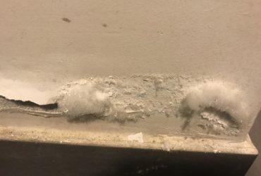 Badanie zasolenia ścian, (sól wychodząca ze ściany ) oznaka wilgoci
